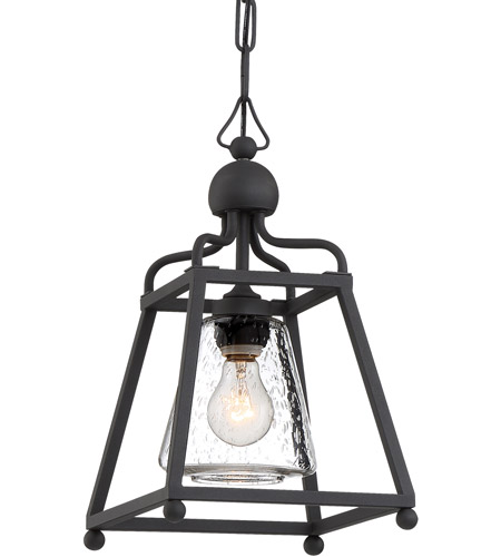 Crystorama SYL-2280-SD-BF Sylvan 1 Light 9 inch Black Forged Outdoor Pendant in Seeded photo