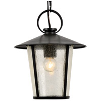 Crystorama AND-9203-SD-MK Andover 1 Light 9 inch Matte Black Outdoor Chandelier