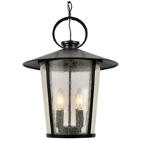 Crystorama AND-9204-SD-MK Andover 4 Light 14 inch Matte Black Outdoor Chandelier