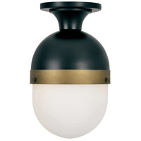 Capsule 1 Light 8 inch Matte Black and Textured Gold Outdoor Ceiling Mount, Brian Patrick Flynn