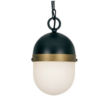 Capsule 1 Light 6 inch Matte Black and Textured Gold Outdoor Pendant, Brian Patrick Flynn