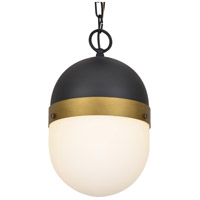 Capsule 1 Light 8 inch Matte Black and Textured Gold Outdoor Pendant