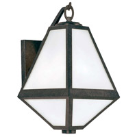 Glacier 1 Light 13 inch Black Charcoal Outdoor Wall Mount in Opal Frosted