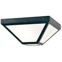 Glacier 2 Light 12 inch Black Charcoal Outdoor Flush Mount in Opal Frosted