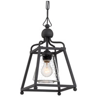 Sylvan 1 Light 9 inch Black Forged Outdoor Pendant in Seeded