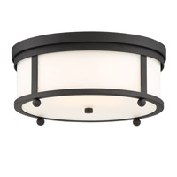 Sylvan 3 Light 15 inch Black Forged Outdoor Ceiling Mount, Libby Langdon