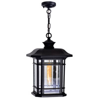 CWI Lighting 0411P9-1-101 Blackburn 1 Light 9 inch Black Outdoor Hanging Light