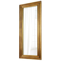 Turic 84 X 38 inch Brass Mirror Home Decor