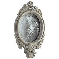 Ansley 12 X 7 inch Antiqued Ash Mirror Home Decor