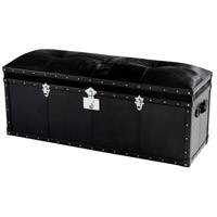 Cyan Design 08981 Casselton Black Trunk