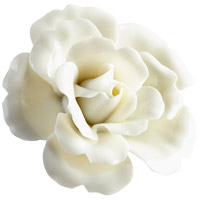 Blooming Parade Off White Glaze Wall Decor, Small