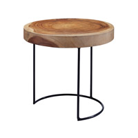 Dimond Home Suar Wood Slab Accent Table in Natural Metal and Suar Wood 159-008