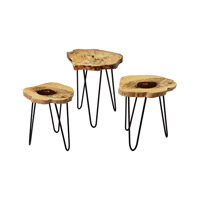 Dimond Home Nesting Accent Table in Natural Teak and Bronze Teak and Stainless 162-002