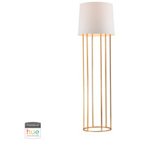 Dimond Lighting D2591-HUE-B Barrel Frame 63 inch 60 watt Gold Leaf Floor Lamp Portable Light