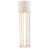 Dimond Lighting Barrel Frame 1 Light Floor Lamp  in Gold Leaf Metal D2591