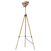 Ethan 40 inch 60 watt Aged Brass Floor Lamp Portable Light