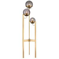 Dimond Lighting D4248 South Water 58 inch 60 watt Antique Brass/Smoked Glass Floor Lamp Portable Light