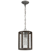 Dimond Lighting D4327 Renaissance Invention 1 Light 8 inch Aged Wood and Weathered Zinc Mini Pendant Ceiling Light, Long alternative photo thumbnail