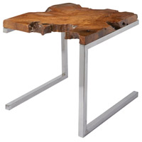 Teak 22 inch Stainless Steel/Teak Accent Table
