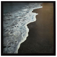 Dimond Home 7011-1267 Virginia Beach Gloss Black Wall Art
