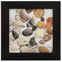 Dimond Home 7011-1269 Shells and Stones Gloss Black Wall Art