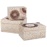 Dimond Home 7163-037 Urchin 12 X 8 inch Natural Box in Large, Large