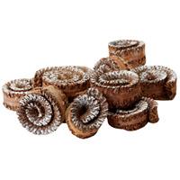 Dimond Home 742004 Palm Rule Spirals Silver Decor