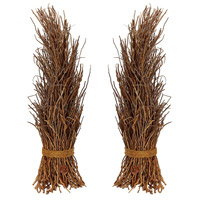 Dimond Home 742021/S2 Cocoa Twig Natural Botanical Decoration