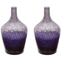 Dimond Home 876027/S2 Ombre 14 X 9 inch Bottle in Plum