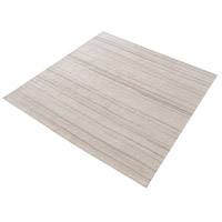 Adana 16 X 16 inch Cream and Beige Rug in 16-inch Square