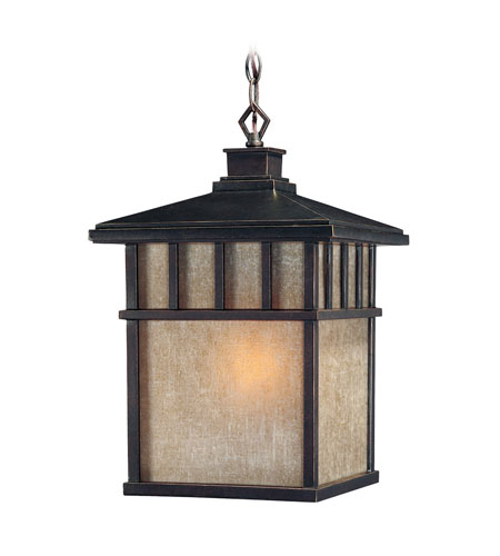 Dolan Designs 9114-68 Barton 1 Light 11 inch Winchester Exterior Hanging Lantern in Arizona photo