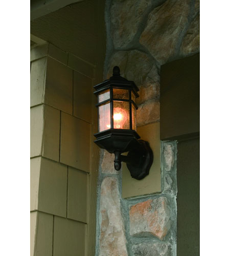 Dolan Designs 9231-68 Barlow 1 Light 15 inch Winchester Exterior Wall Lantern photo
