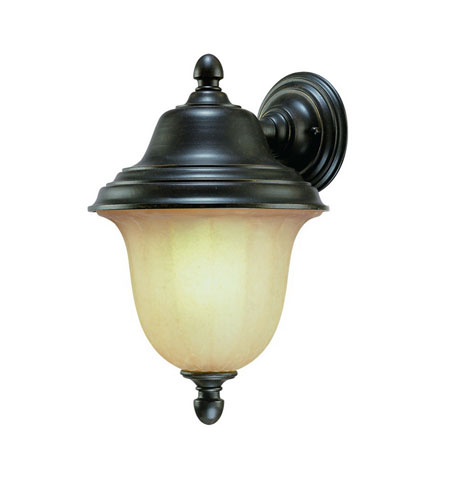 Dolan Designs Helena 1 Light Exterior Wall Lantern in Winchester 9725-68 photo
