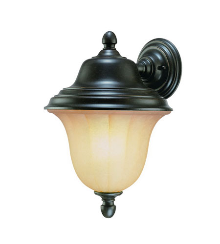 Dolan Designs Helena 1 Light Exterior Wall Lantern in Winchester 9728-68 photo