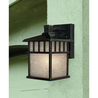 Barton 1 Light 11 inch Winchester Exterior Wall Lantern in Arizona
