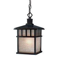 Barton 1 Light 7 inch Winchester Exterior Hanging Lantern in Arizona