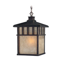 Barton 1 Light 11 inch Winchester Exterior Hanging Lantern in Arizona