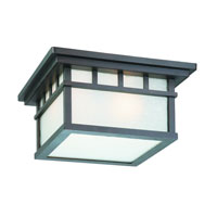 Dolan Designs Barton 2 Light Exterior Ceiling in Olde World Iron 9119-34