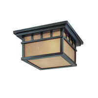 Barton 2 Light 12 inch Winchester Exterior Ceiling in Arizona