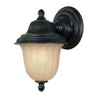 Dolan Designs Helena 1 Light Exterior Wall Lantern in Winchester 9125-68