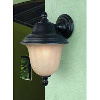 Dolan Designs 9128-68 Helena 1 Light 15 inch Winchester Exterior Wall Lantern
