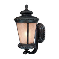 Dolan Designs Edgewood 1 Light Exterior Wall Lantern in Manchester 9130-114