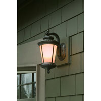 Dolan Designs Edgewood 1 Light Exterior Wall Lantern in Manchester 9135-114