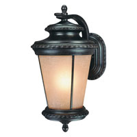 Dolan Designs Edgewood 1 Light Exterior Wall Lantern in Manchester 9138-114