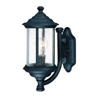 Dolan Designs Walnut Grove 1 Light Exterior Wall Lantern in Black 915-50