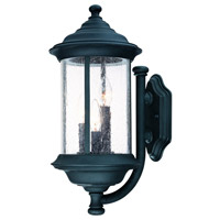 Dolan Designs Walnut Grove 3 Light Exterior Wall in Black 917-50