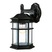 Dolan Designs Barlow 1 Light Exterior Wall Lantern in Winchester 9230-68