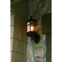 Dolan Designs Barlow 1 Light Exterior Wall Lantern in Winchester 9231-68