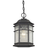 Barlow 1 Light 8 inch Winchester Outdoor Hanging Lantern