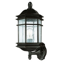 Dolan Designs Barlow 1 Light Exterior Wall Lantern in Winchester 9236-68